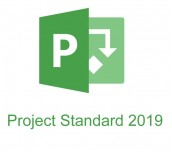 Microsoft Project Standard 2019 Win English Medialess